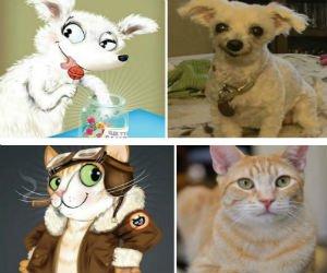 Portrete simpatice cu pisici si caini