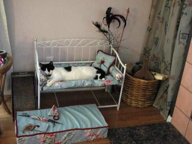 Кроватка для кошек своими руками фото