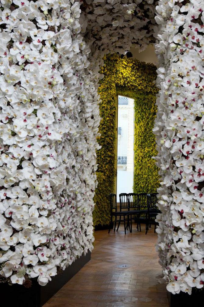 Poza 6 - Un milion de flori pentru Dior