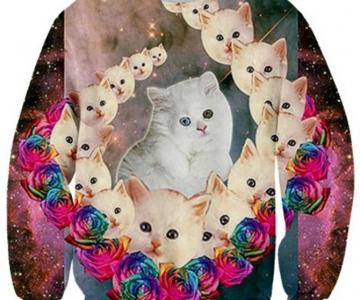 Fashion kitsch cu pisici