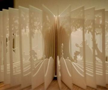 Carti sculptate - Povesti la 360 de grade