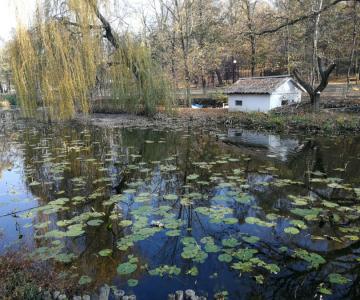 Parcul Nicolae Romanescu: Minunea verde din Banie, in poze superbe
