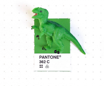 Perechi de culori Pantone si obiecte mici