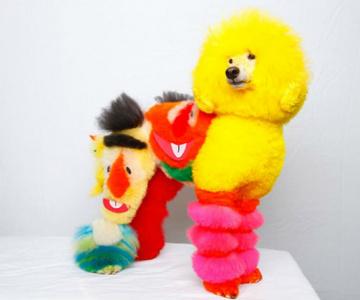 Cea mai excentrica expozitie de tunsori canine