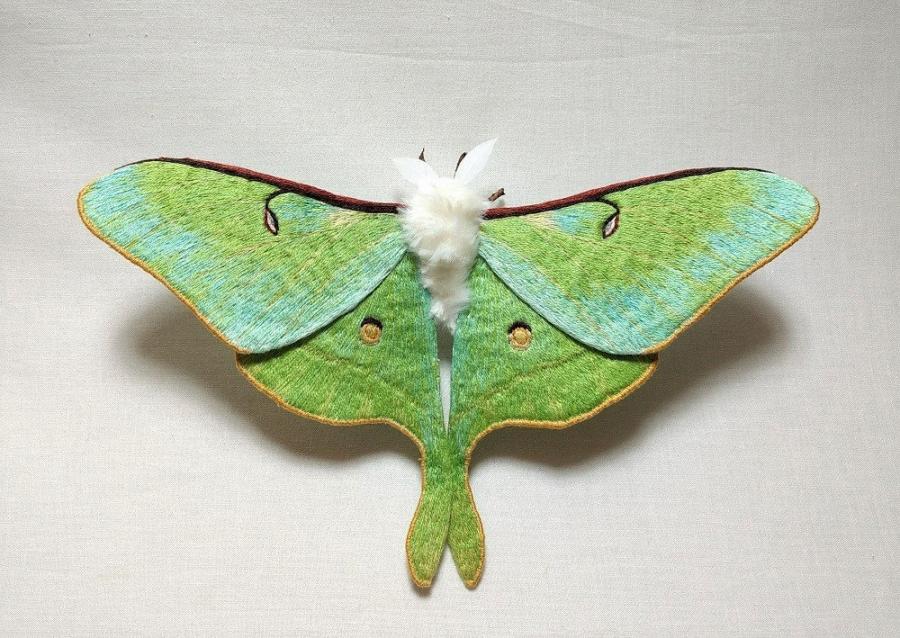 Gingasia fluturilor crosetati, cu Yumi Okita - Poza 4
