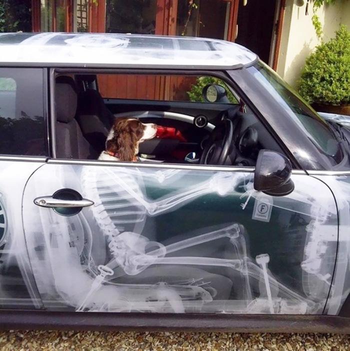 Arta pe patru roti: Cei mai ingeniosi posesori de masini - Poza 4