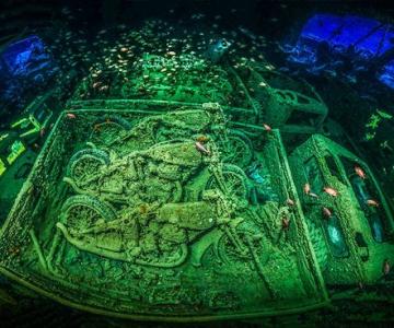 Fotografii superbe din uimitoarea lume subacvatica