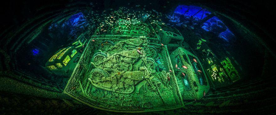 Fotografii superbe din uimitoarea lume subacvatica - Poza 1