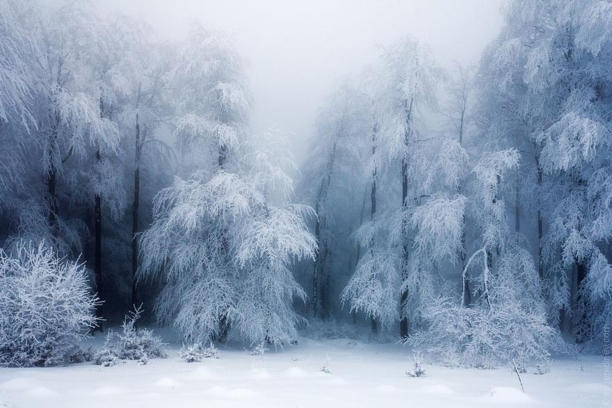 Cele mai frumoase peisaje de iarna - Poza 6