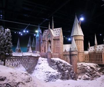 Harry Potter te invita sa iei cina de Craciun la Hogwarts