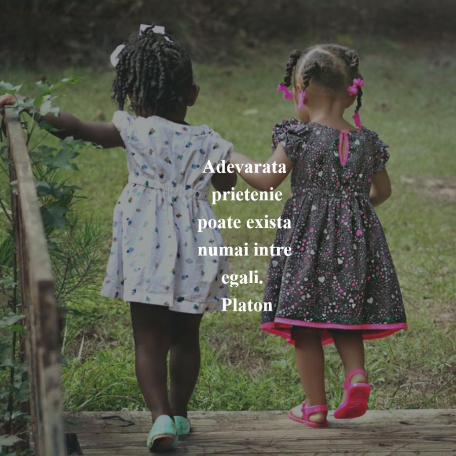 Cele mai frumoase citate despre prietenia adevarata - Poza 6