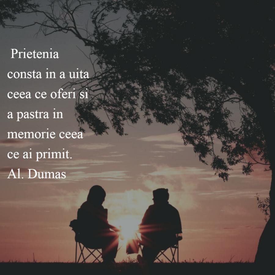 Cele mai frumoase citate despre prietenia adevarata - Poza 4