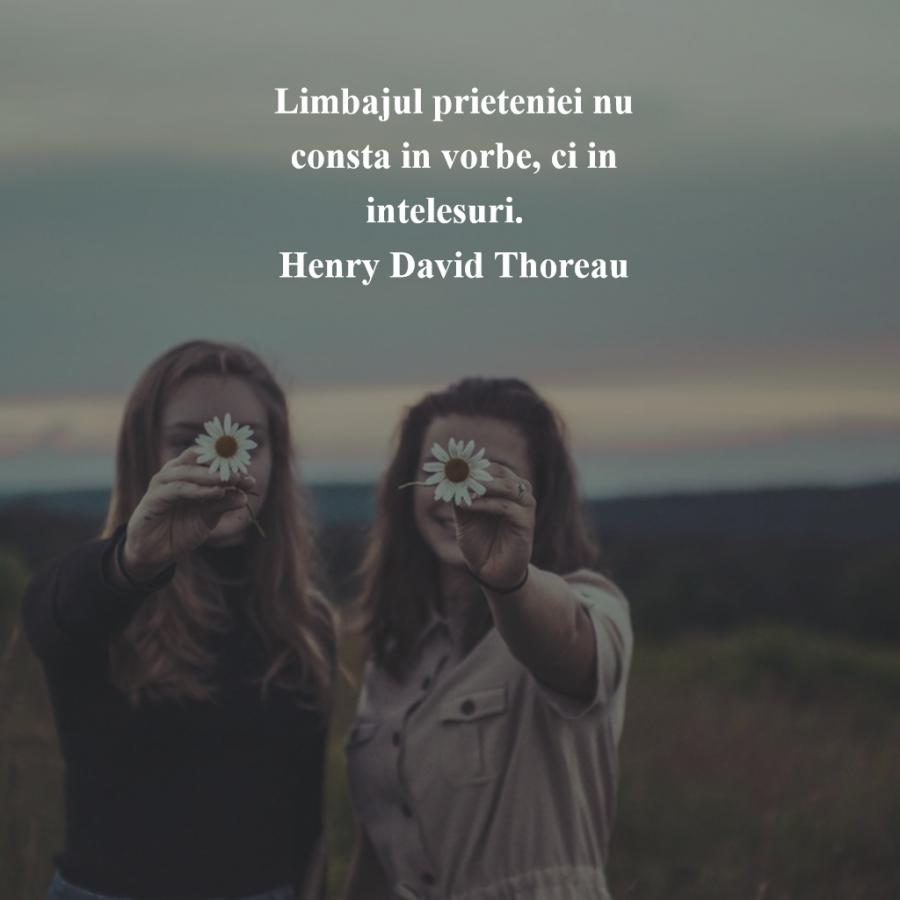 Cele mai frumoase citate despre prietenia adevarata - Poza 8