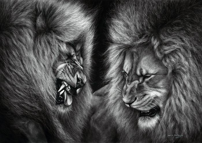 Arta realistica: Lumea animala, in picturi superbe - Poza 6