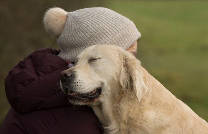 Cel mai bun prieten al omului, in poze spectaculoase - Poza 4