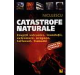 Catastrofe naturale. Eruptii vulcanice inundatii cutremure uragane taifunuri tsunami