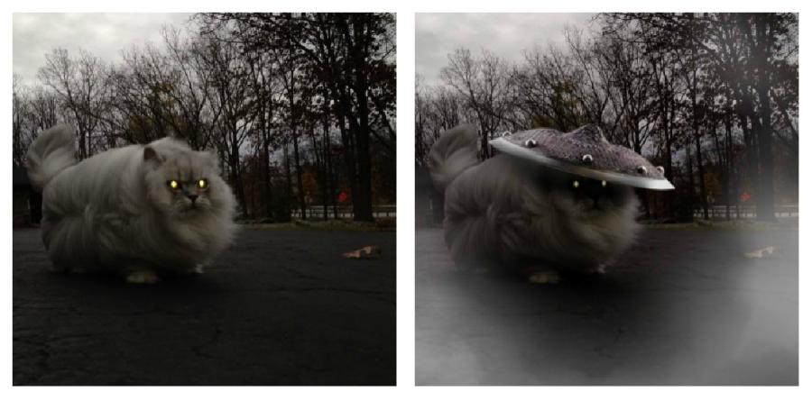Cele mai haioase poze prelucrate in Photoshop - Poza 10