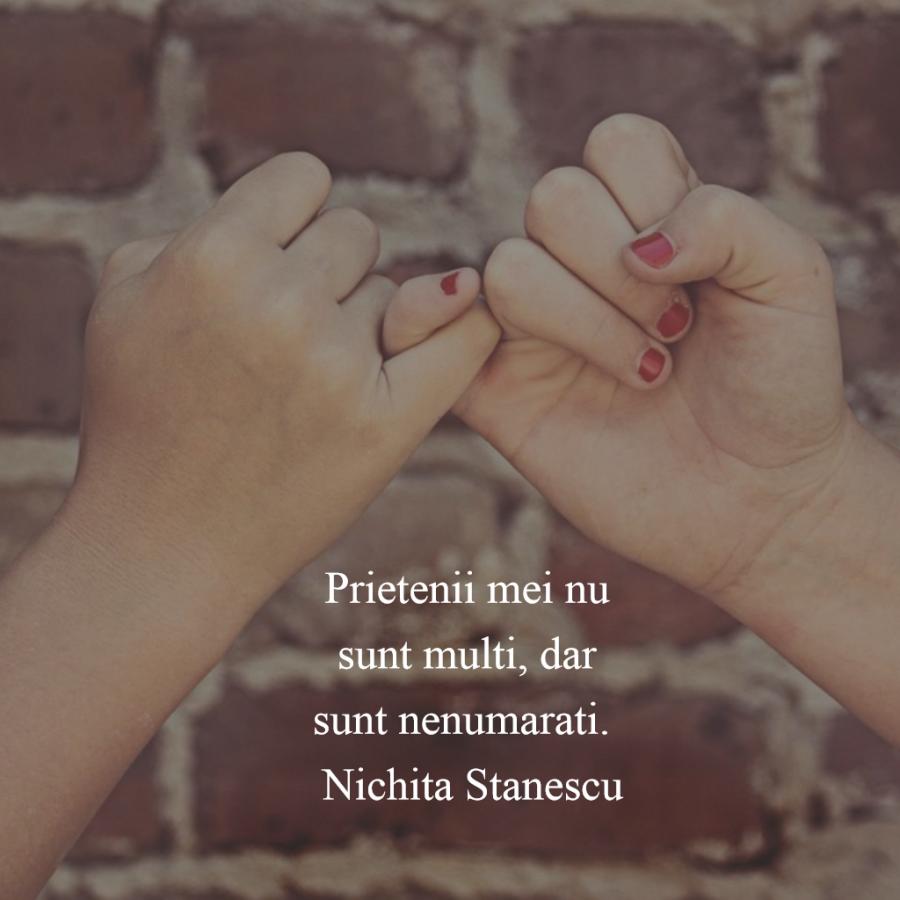 Cele mai frumoase citate despre prietenia adevarata - Poza 9