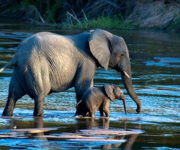 National Geographic Traveler Photo Contest 2013: Cele mai bune inscrie