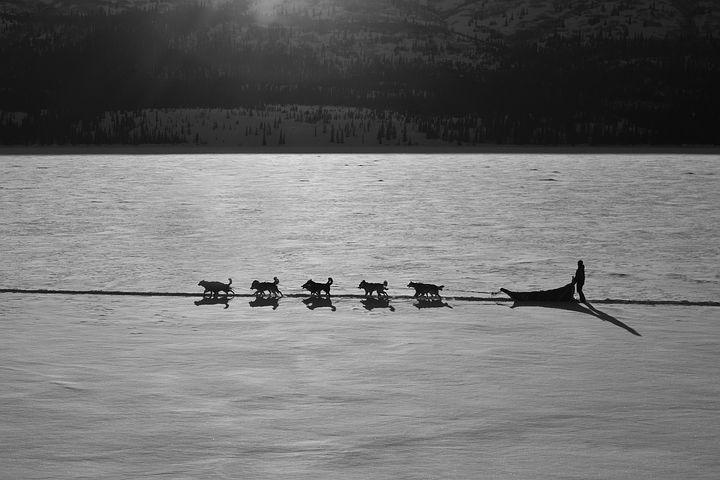 Cele mai frumoase ipostaze ale iernii, in poze sublime - Poza 5