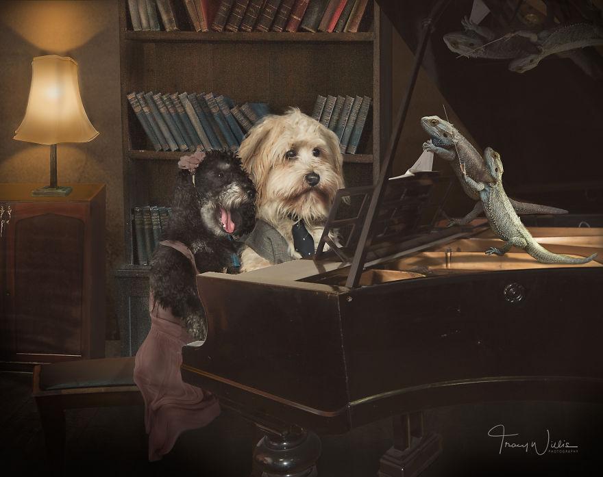Povesti cu animalute haioase, in poze suprarealiste - Poza 4