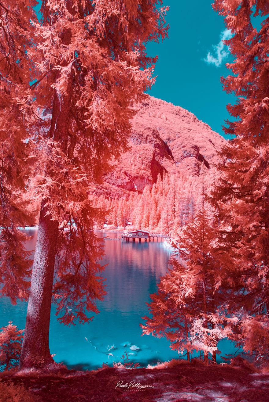 Lumea in infrarosu, intr-un set de fotografii superbe - Poza 19