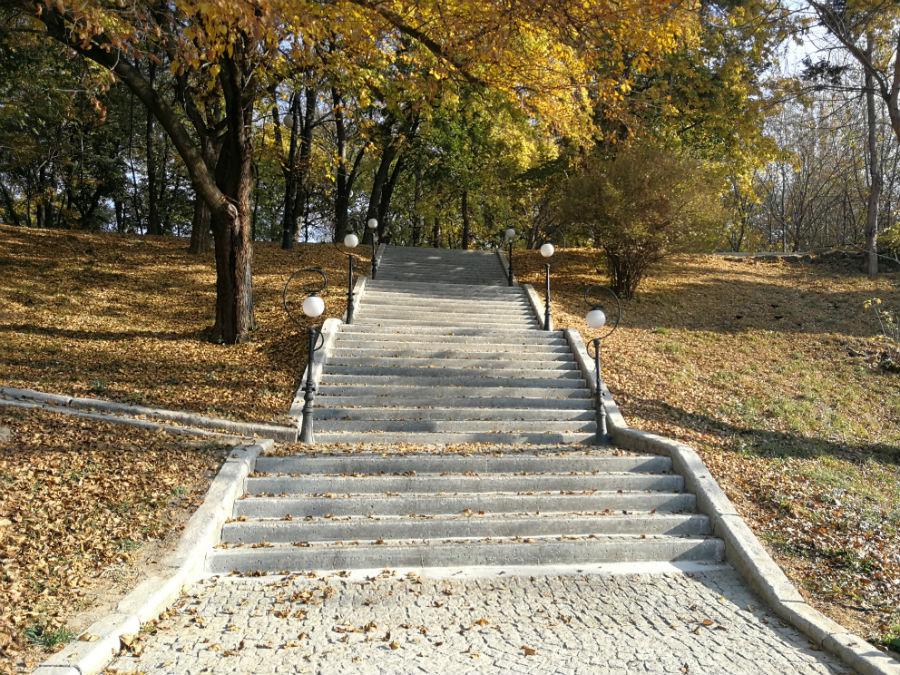 Parcul Nicolae Romanescu: Minunea verde din Banie, in poze superbe - Poza 19