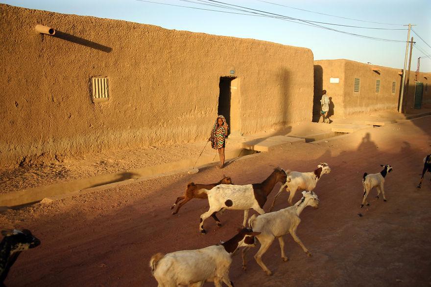 Splendoarea diversitatii: Oameni si locuri, de Pascal Mannaerts - Poza 8
