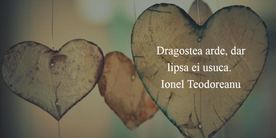 Citate superbe despre dragoste care iti vor umple inima cu bucurie - Poza 15
