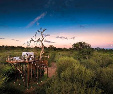 Safari sub cerul liber, intr-o statiune luxoasa din Africa de Sud