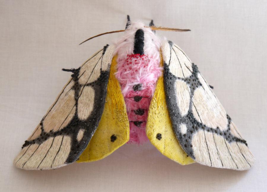 Gingasia fluturilor crosetati, cu Yumi Okita - Poza 12