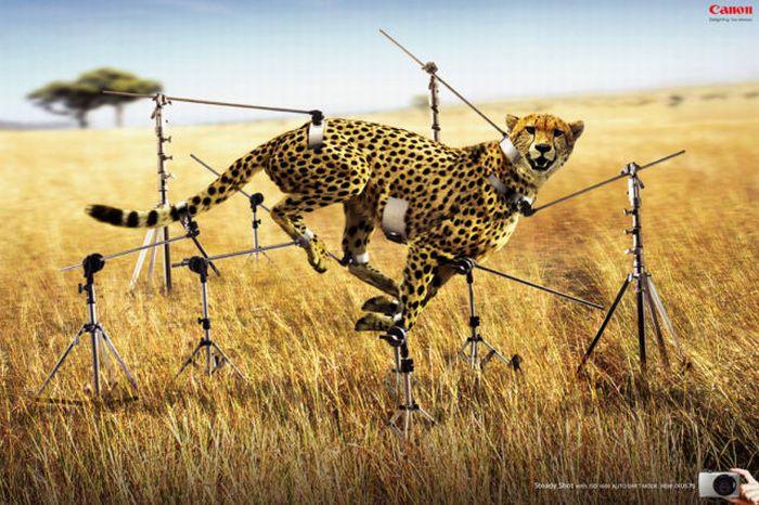 30 de reclame amuzante - Poza 21