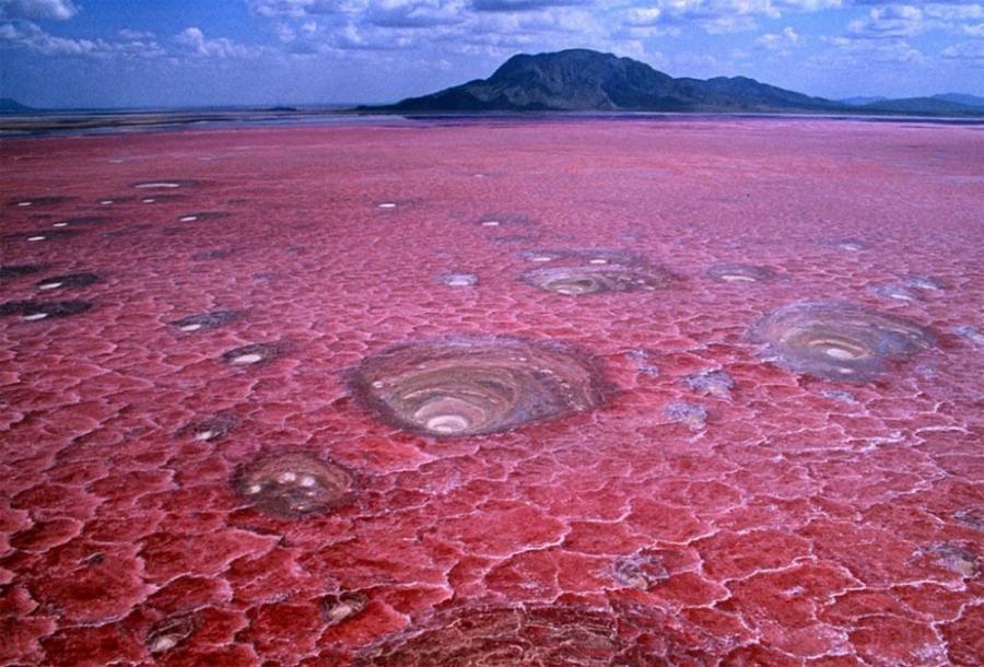Fenomene uimitoare ale naturii, in poze sublime - Poza 9