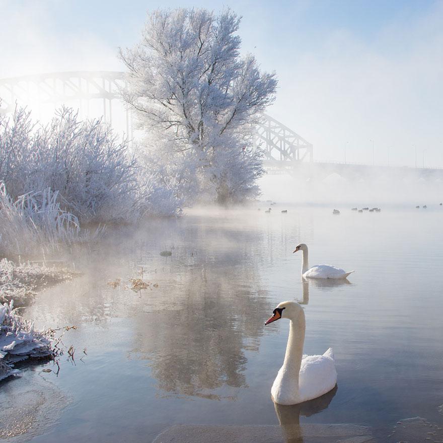 Cele mai frumoase peisaje de iarna - Poza 8
