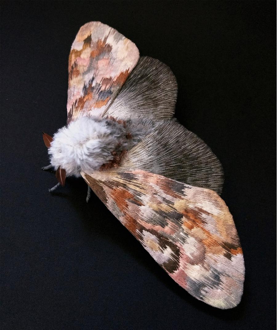 Gingasia fluturilor crosetati, cu Yumi Okita - Poza 2