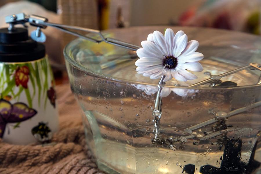 Cum se oglindeste frumusetea naturii in picaturi limpezi de apa - Poza 14