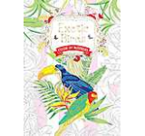 Exotic Birds: Colour by Numbers (Colouring Books)
