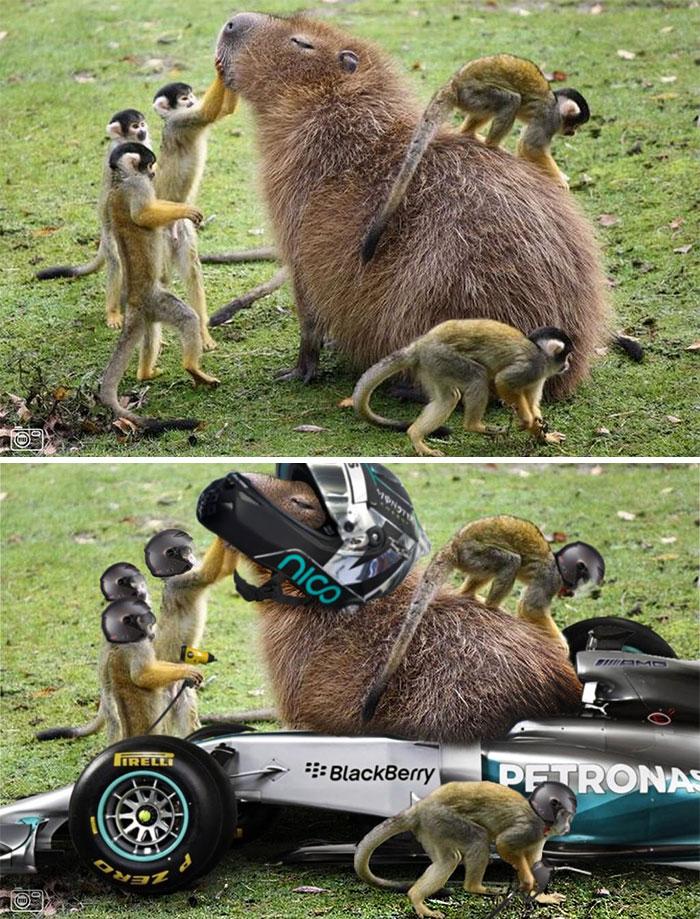 Uimitoare si hilare: Cele mai tari poze prelucrate in Photoshop - Poza 12