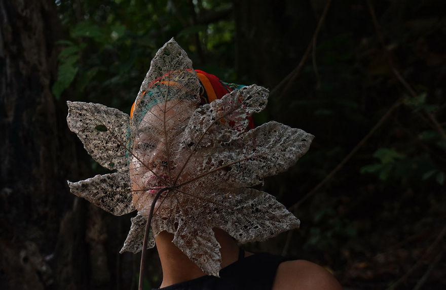 Concurs foto dedicat mediului: Splendoarea naturii, in poze uluitoare - Poza 16