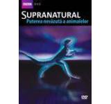 Supranatural - Puterea nevazuta a animalelor