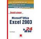 Invata singur Microsoft Office Excel in 24 de ore