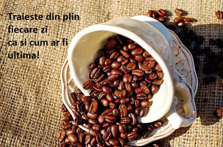 Dimineti cu ganduri bune si aburi de cafea, in poze inspirationale - Poza 5