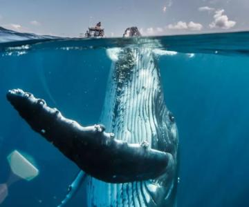 Nat Geo Photo Contest 2019: Cele mai frumoase fotografii de calatorie