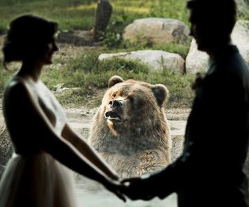 Cele mai haioase poze de nunta