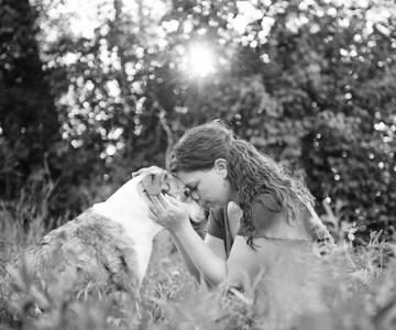 Emotionant: Stapanii isi iau la revedere de la cainii lor