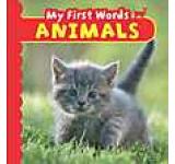 Animal Photo Board