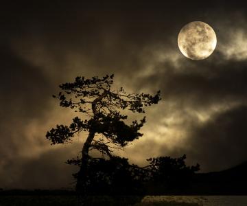 Cele mai frumoase ipostaze ale lunii, in poze superbe