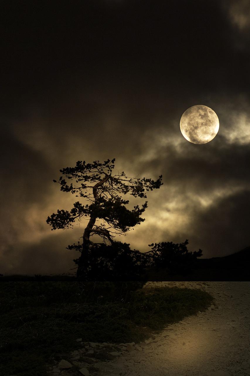 Cele mai frumoase ipostaze ale lunii, in poze superbe - Poza 1