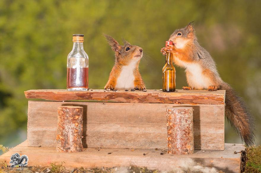 Frumoasa poveste cu veverite roscate, intr-un pictorial adorabil - Poza 11