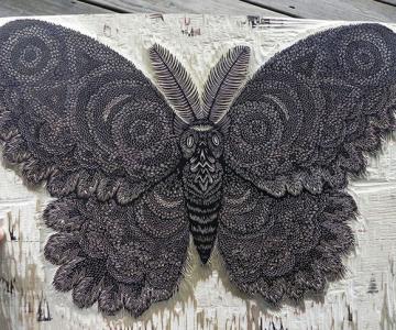 Molie sculptata cu incredibil de multe detalii
